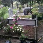 Kocaeli mezar çiçeklendirme