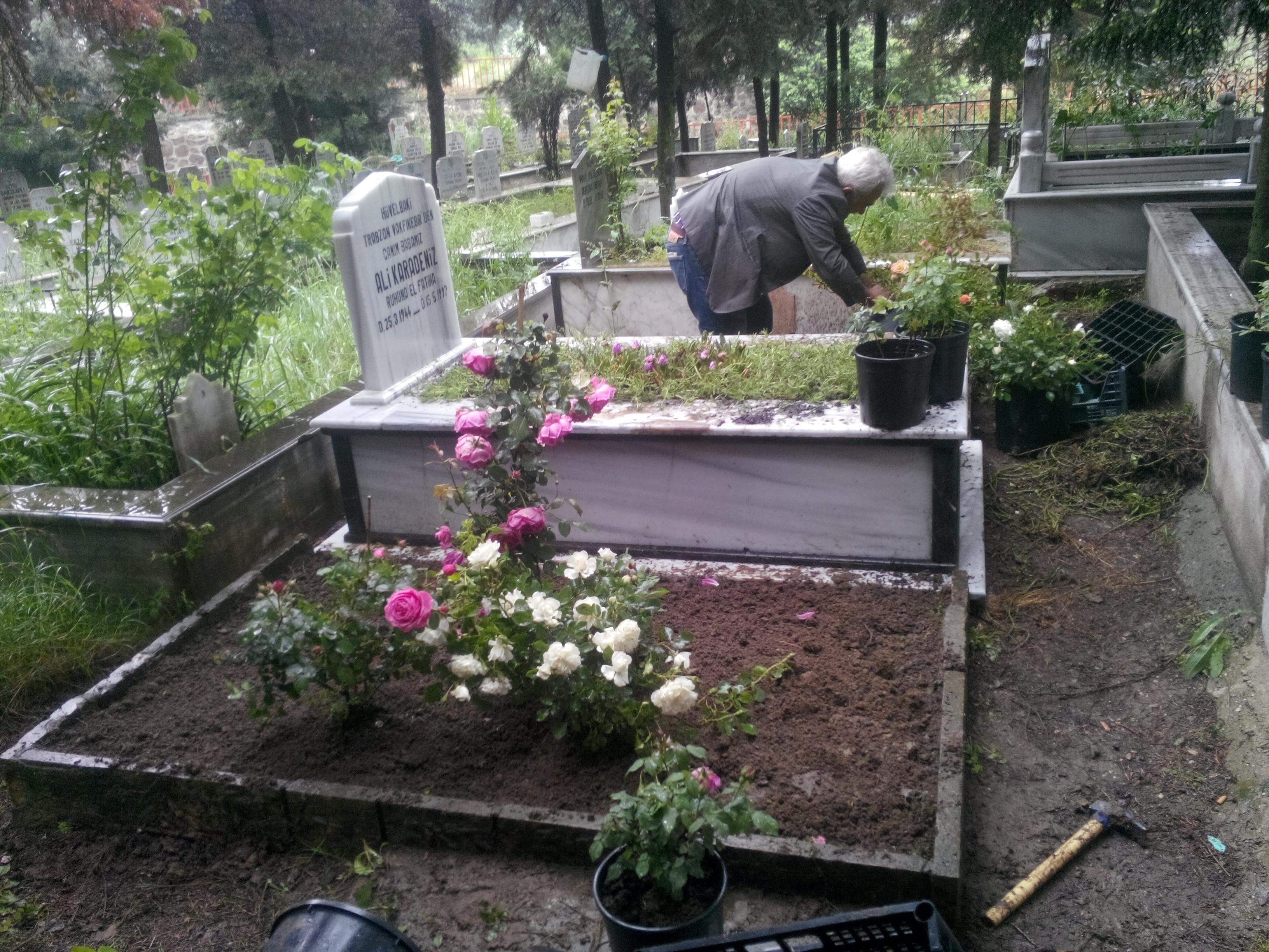 Photo of Kocaeli mezar Peysaj Ve Çiçeklendirme Hizmetleri